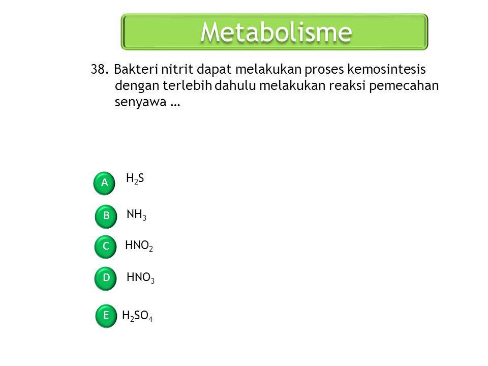Metabolisme 38. Bakteri nitrit dapat melakukan proses kemosintesis dengan terlebih dahulu melakukan reaksi pemecahan senyawa …