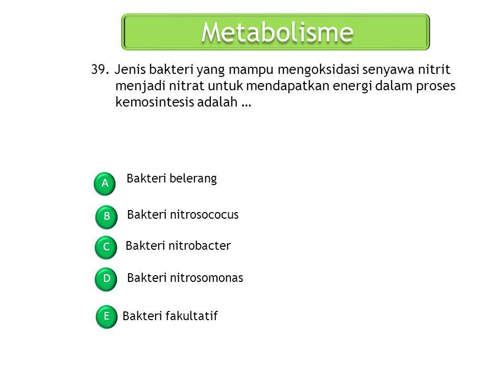 Metabolisme 39. Jenis bakteri yang mampu mengoksidasi senyawa nitrit menjadi nitrat untuk mendapatkan energi dalam proses kemosintesis adalah …