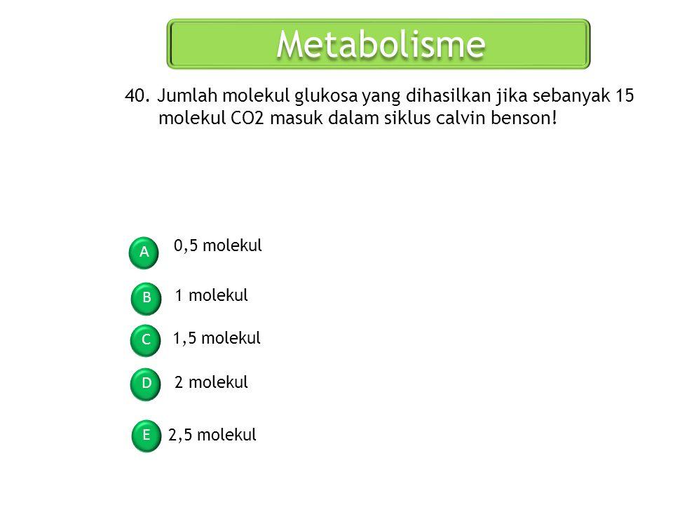 Metabolisme 40. Jumlah molekul glukosa yang dihasilkan jika sebanyak 15 molekul CO2 masuk dalam siklus calvin benson!