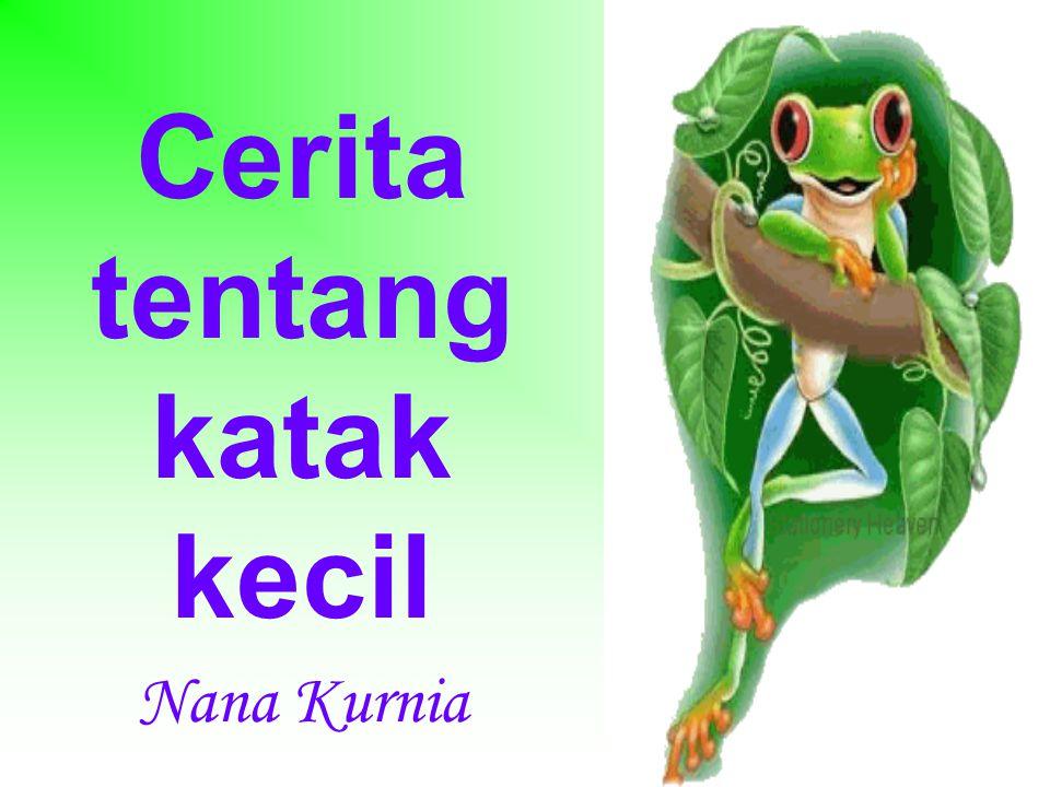 Cerita tentang katak kecil Nana Kurnia