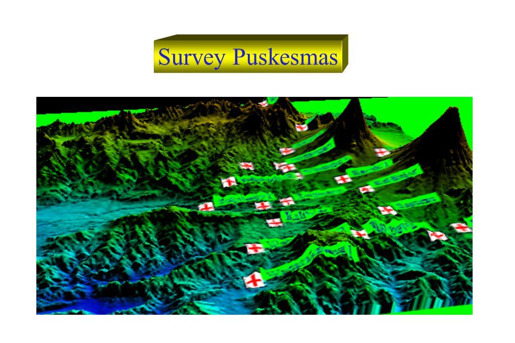 Survey Puskesmas
