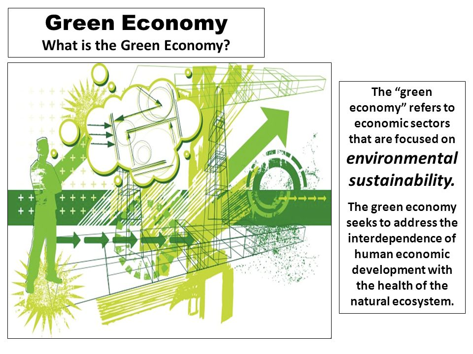 What is the Green Economy