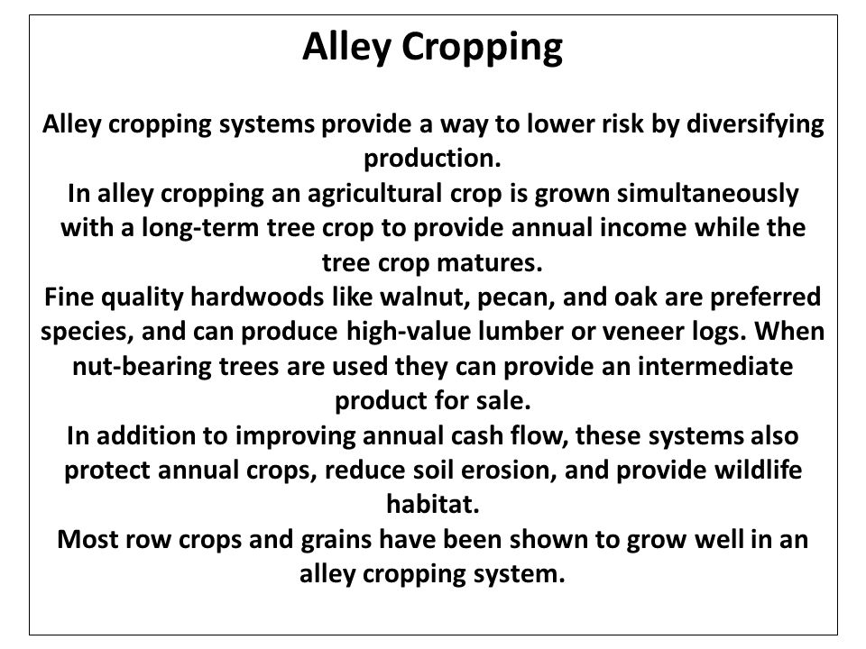 Alley Cropping Alley cropping systems provide a way to lower risk by diversifying production.