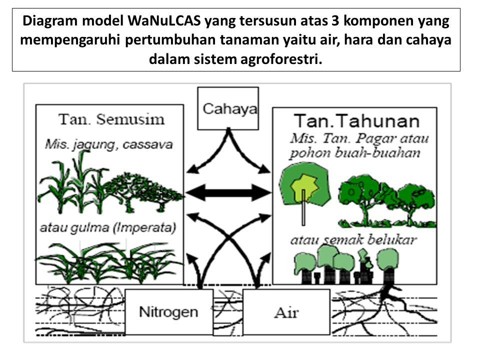 Diagram model WaNuLCAS yang tersusun atas 3 komponen yang mempengaruhi pertumbuhan tanaman yaitu air, hara dan cahaya dalam sistem agroforestri.