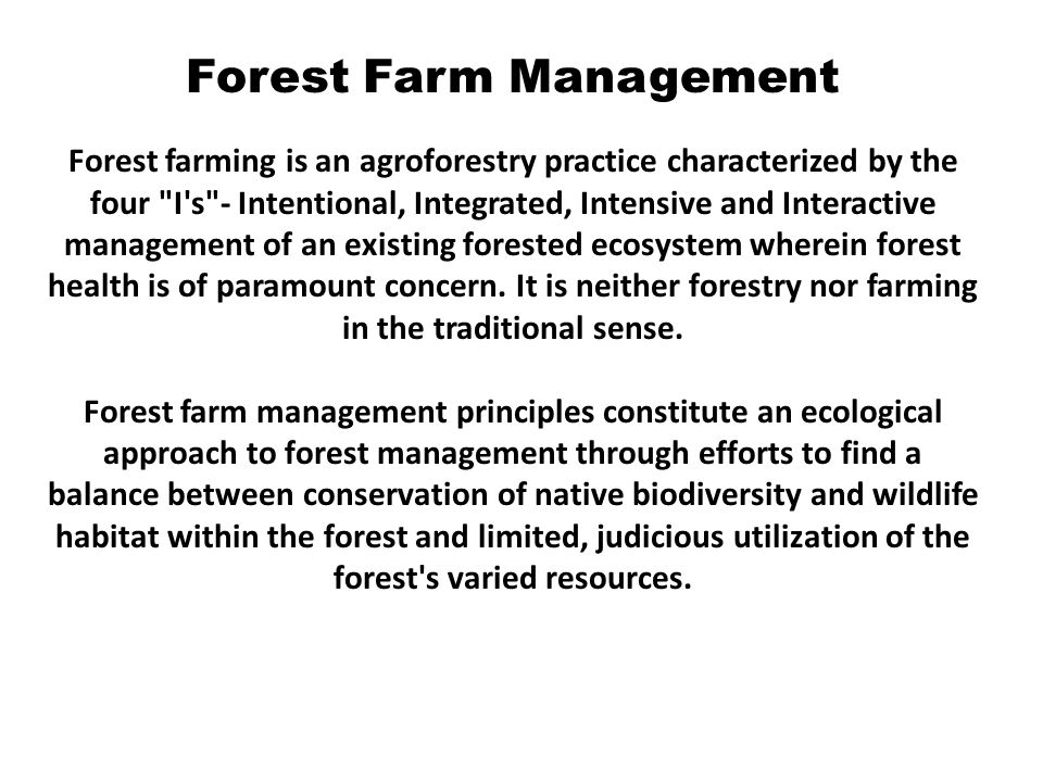 Forest Farm Management