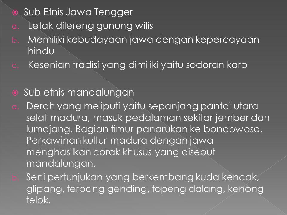 Sub Etnis Jawa Tengger Letak dilereng gunung wilis. Memiliki kebudayaan jawa dengan kepercayaan hindu.