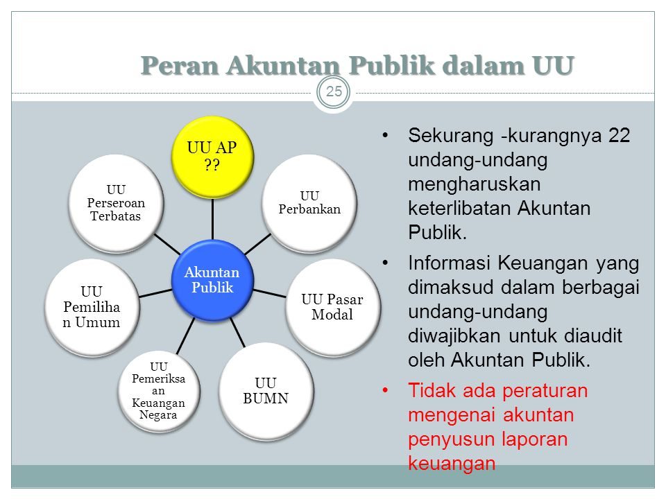 Peran Akuntan Publik dalam UU