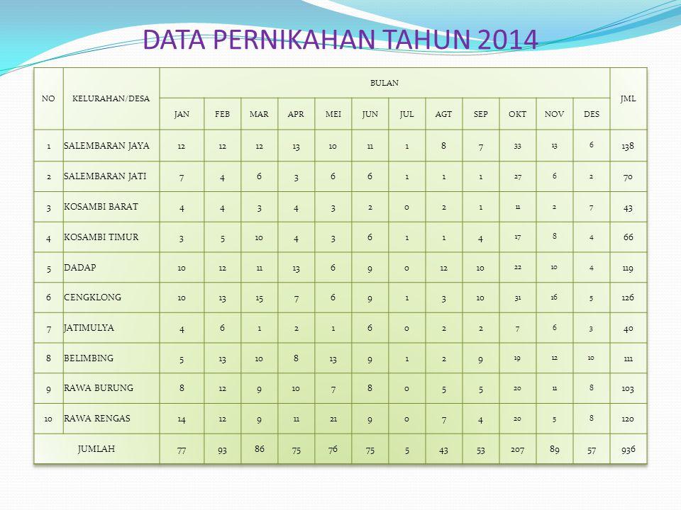DATA PERNIKAHAN TAHUN 2014 1 SALEMBARAN JAYA 12 13 10 11 8 7 138 2