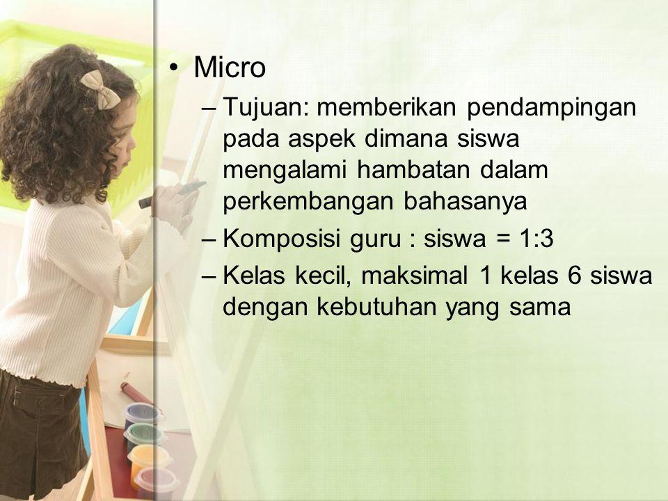 Micro Tujuan: memberikan pendampingan pada aspek dimana siswa mengalami hambatan dalam perkembangan bahasanya.