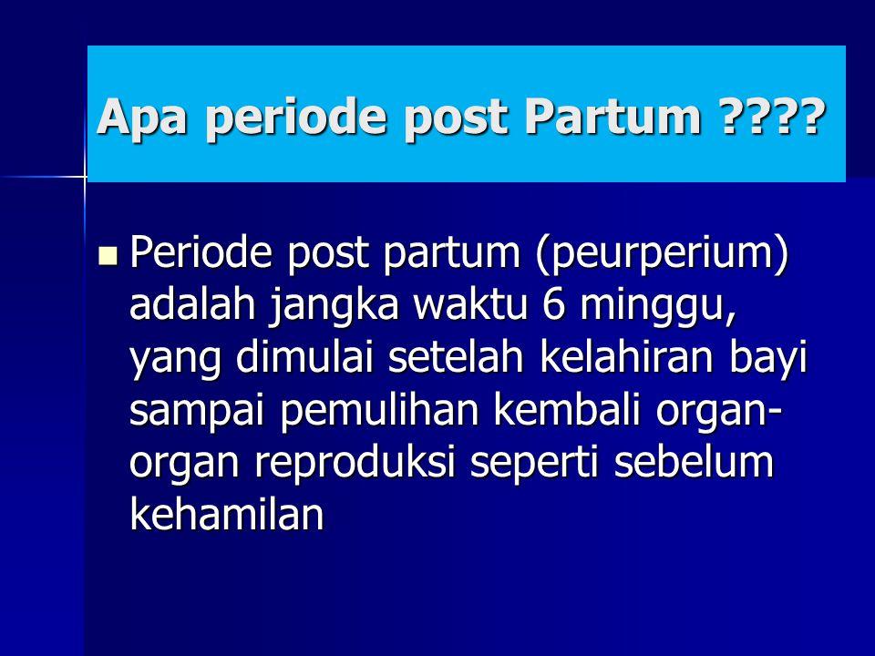 Apa periode post Partum