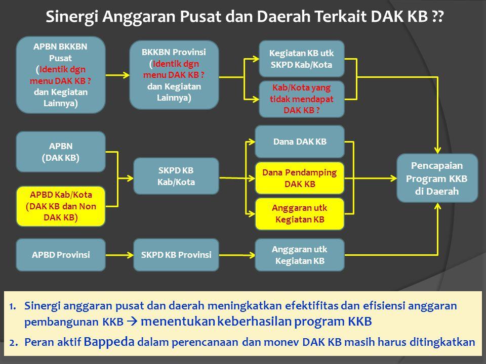 Sinergi Anggaran Pusat dan Daerah Terkait DAK KB