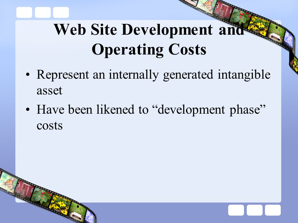 Web Site Development and Operating Costs