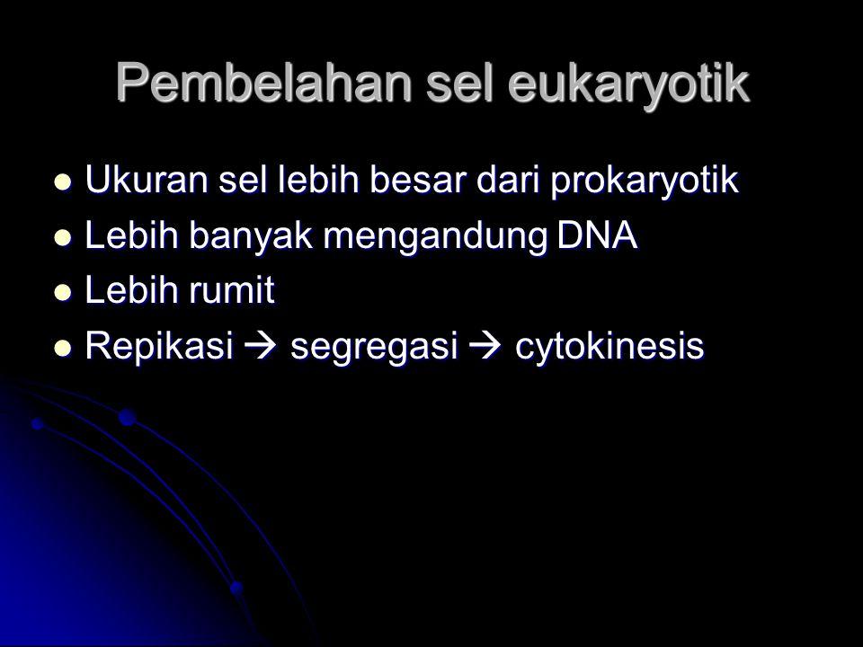 Pembelahan sel eukaryotik