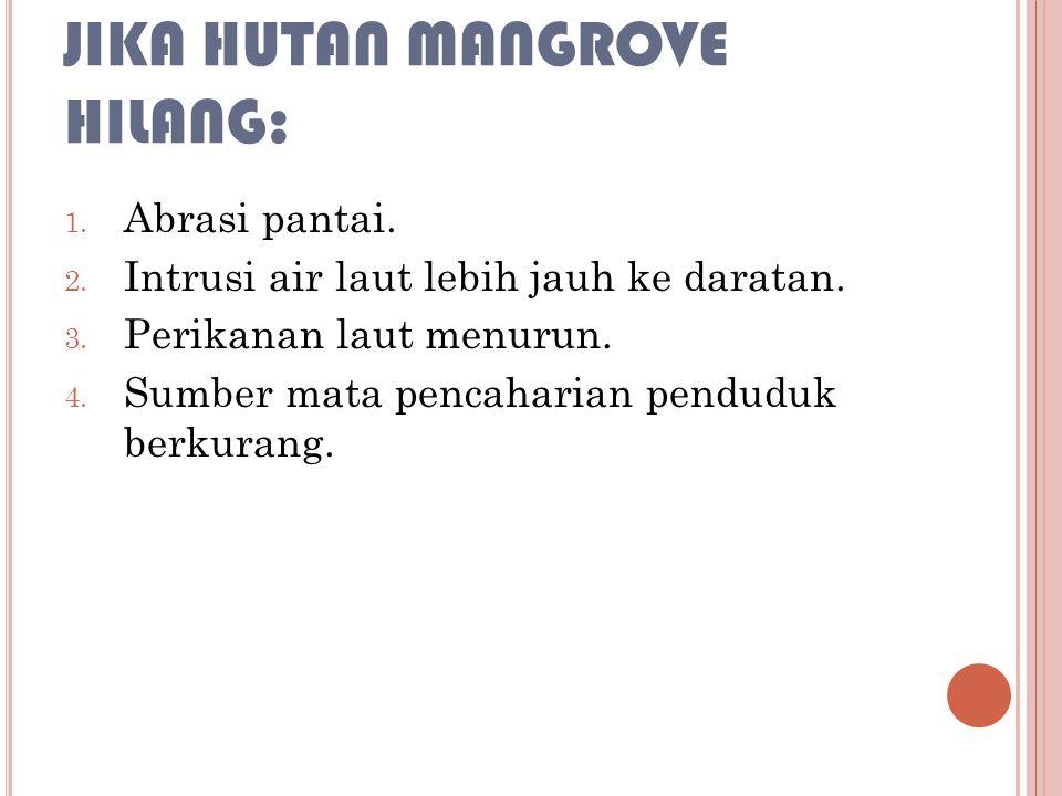 Jika Hutan Mangrove Hilang: