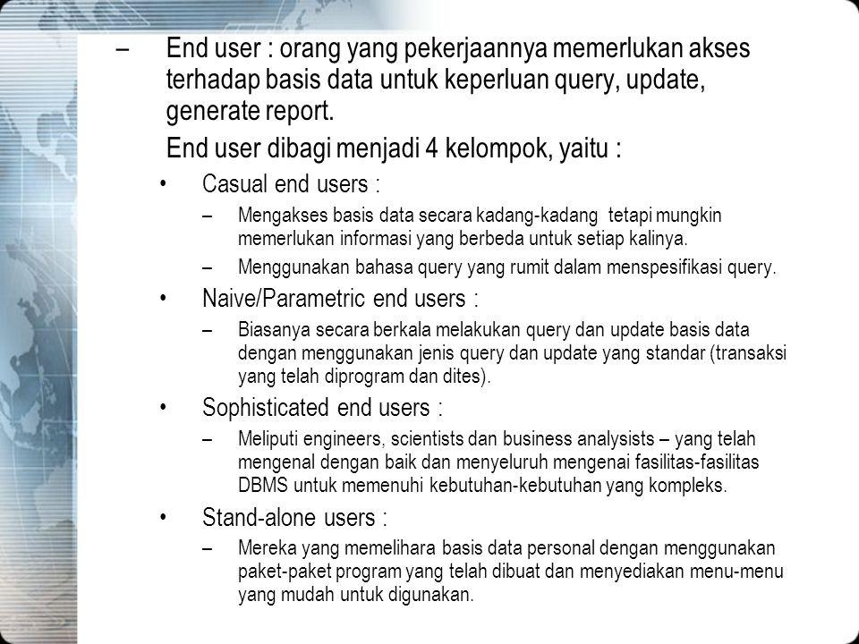 End user dibagi menjadi 4 kelompok, yaitu :