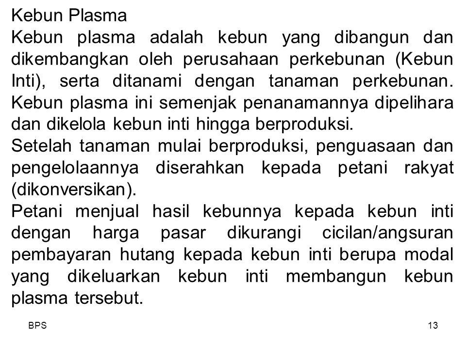 Kebun Plasma