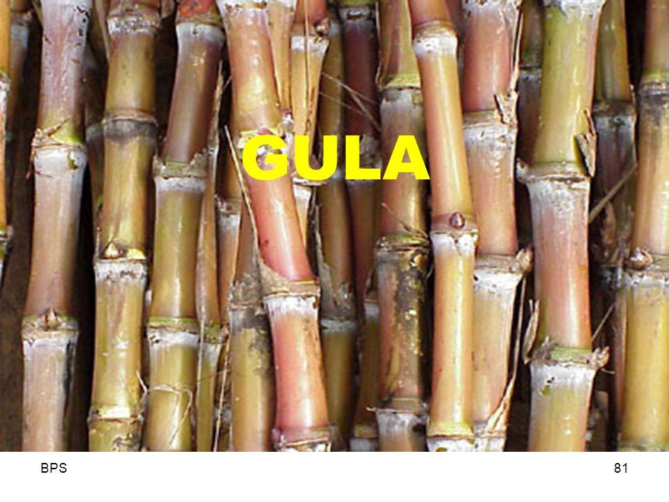 GULA BPS