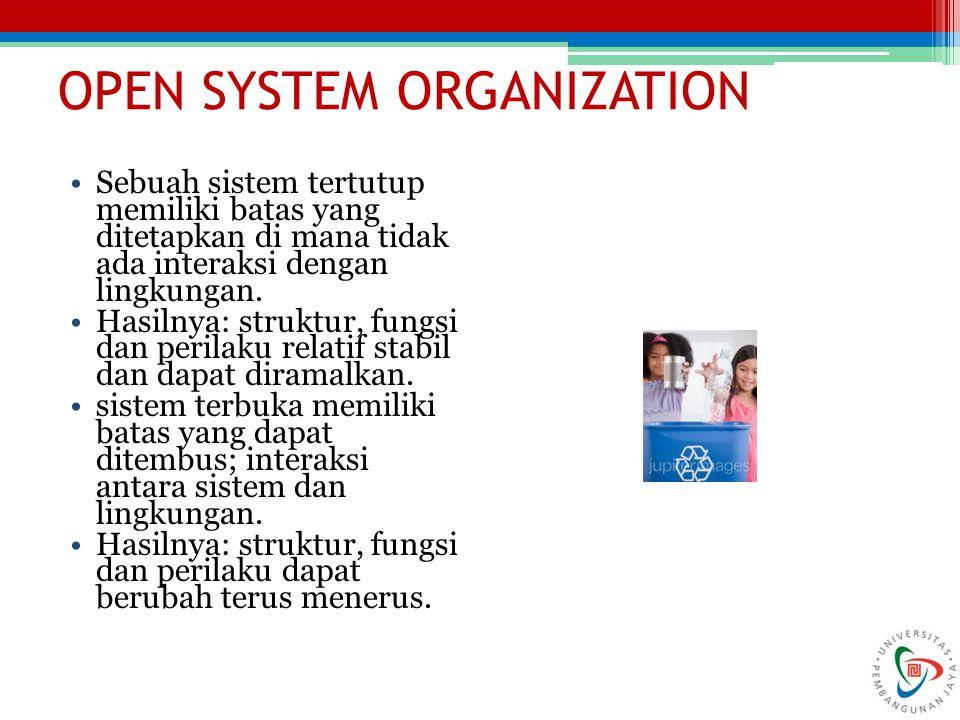 OPEN SYSTEM ORGANIZATION