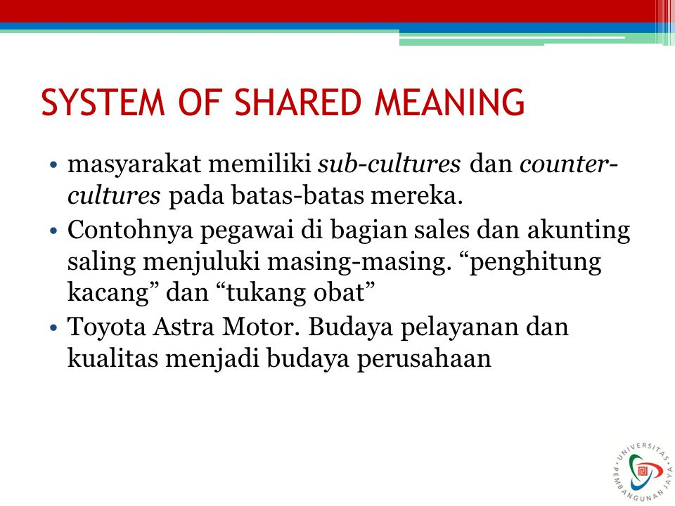 SYSTEM OF SHARED MEANING
