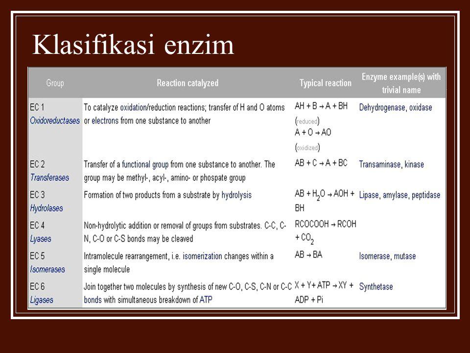 Klasifikasi enzim