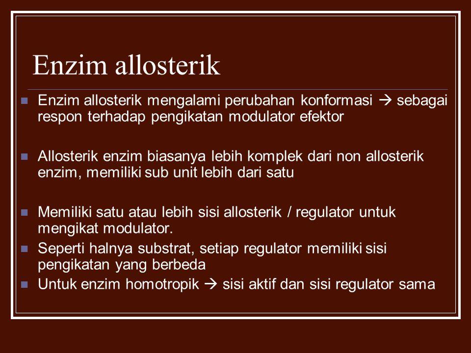 Enzim allosterik Enzim allosterik mengalami perubahan konformasi  sebagai respon terhadap pengikatan modulator efektor.