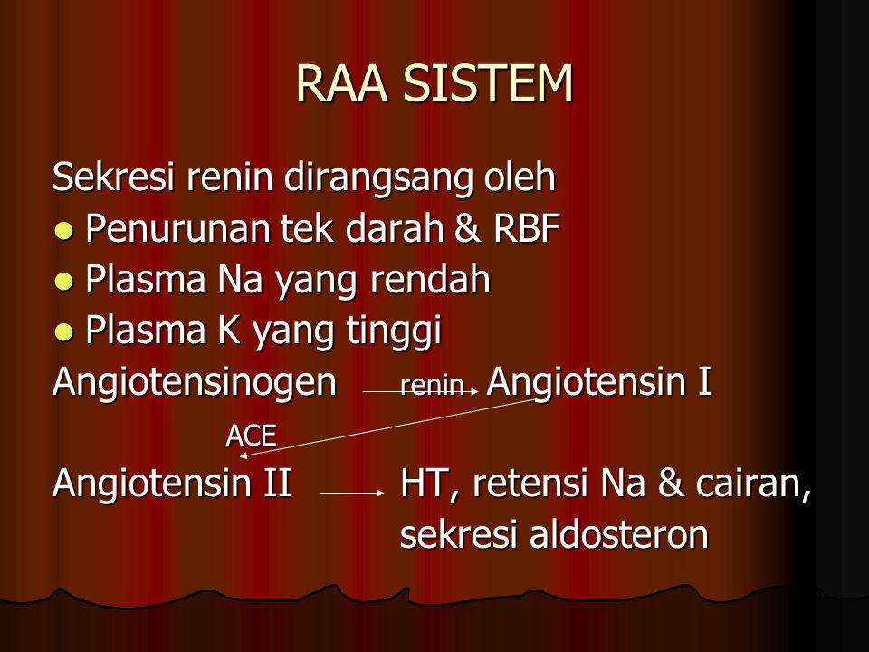RAA SISTEM Sekresi renin dirangsang oleh Penurunan tek darah & RBF
