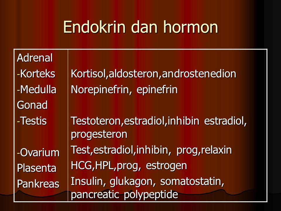 Endokrin dan hormon Adrenal Korteks Medulla Gonad Testis Ovarium