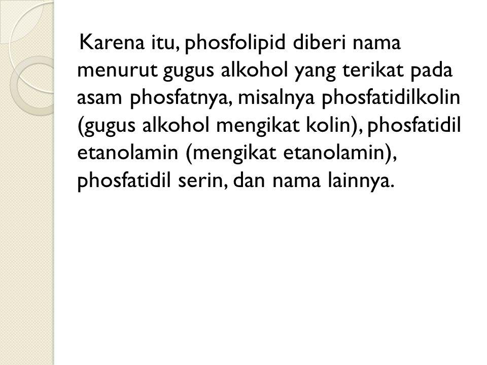 Karena itu, phosfolipid diberi nama menurut gugus alkohol yang terikat pada asam phosfatnya, misalnya phosfatidilkolin (gugus alkohol mengikat kolin), phosfatidil etanolamin (mengikat etanolamin), phosfatidil serin, dan nama lainnya.