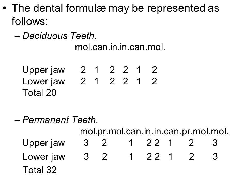 The dental formulæ may be represented as follows: