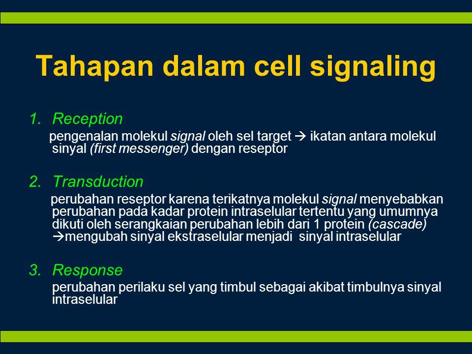 Tahapan dalam cell signaling