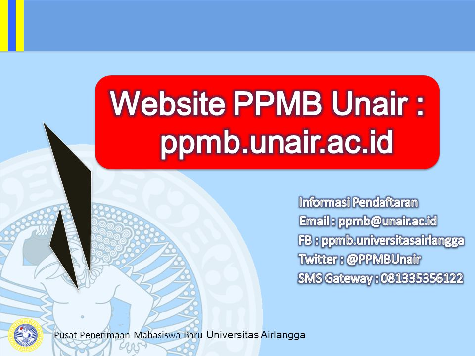 Website PPMB Unair : ppmb.unair.ac.id