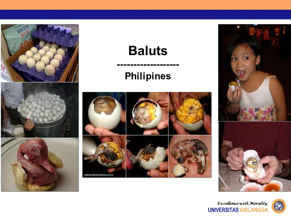 Baluts ------------------- Philipines UNIVERSITAS AIRLANGGA