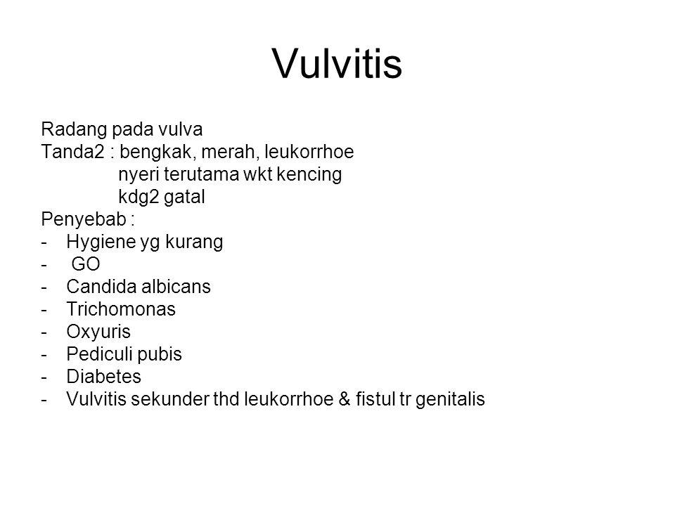 Vulvitis Radang pada vulva Tanda2 : bengkak, merah, leukorrhoe