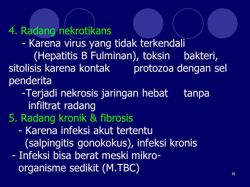 4. Radang nekrotikans - Karena virus yang tidak terkendali