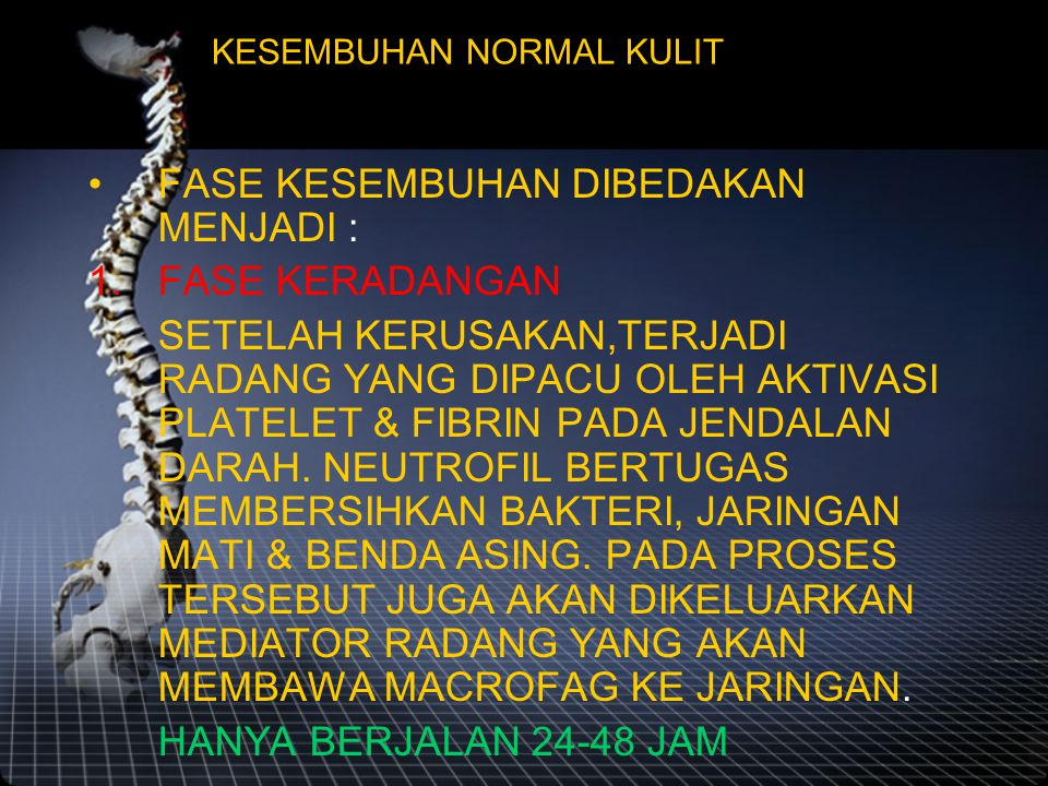 KESEMBUHAN NORMAL KULIT