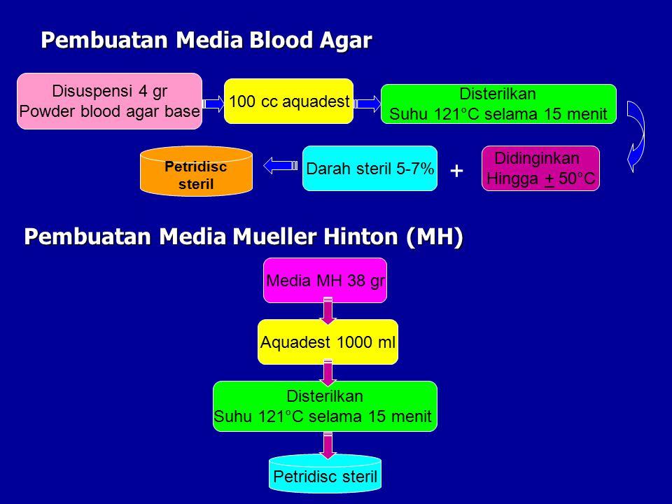 Pembuatan Media Blood Agar