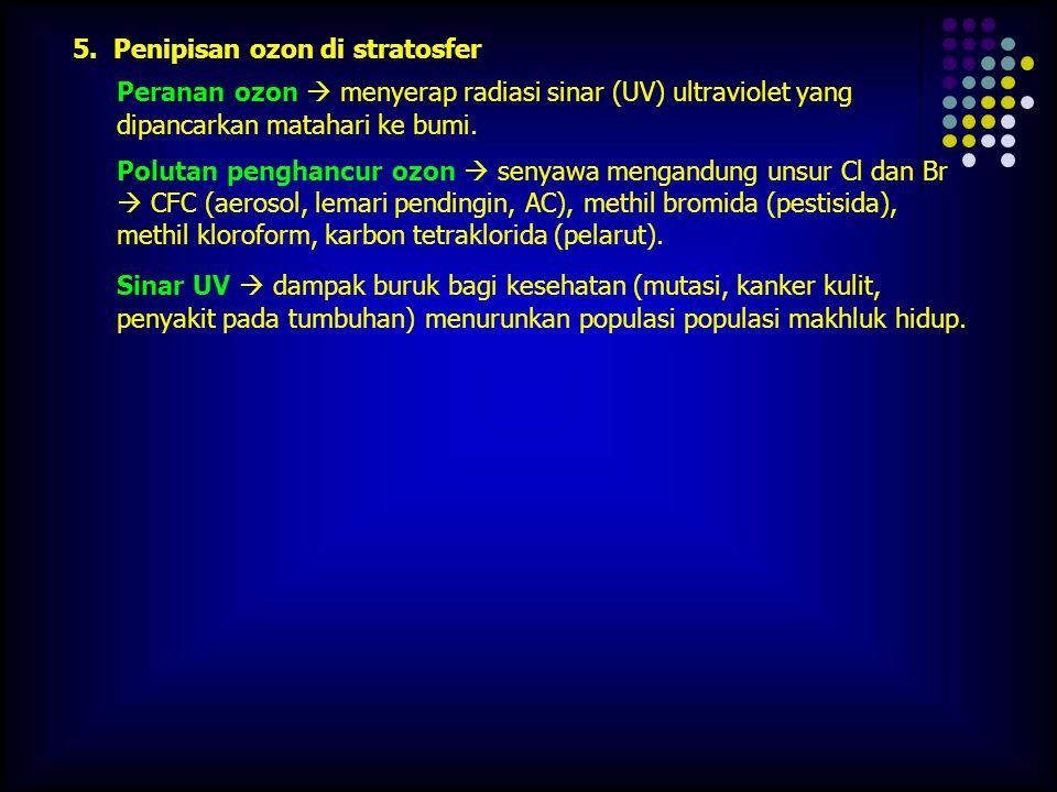 5. Penipisan ozon di stratosfer