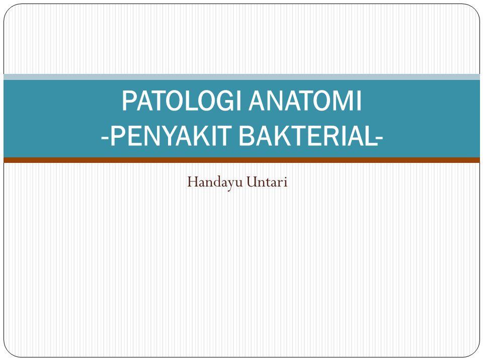 PATOLOGI ANATOMI -PENYAKIT BAKTERIAL-