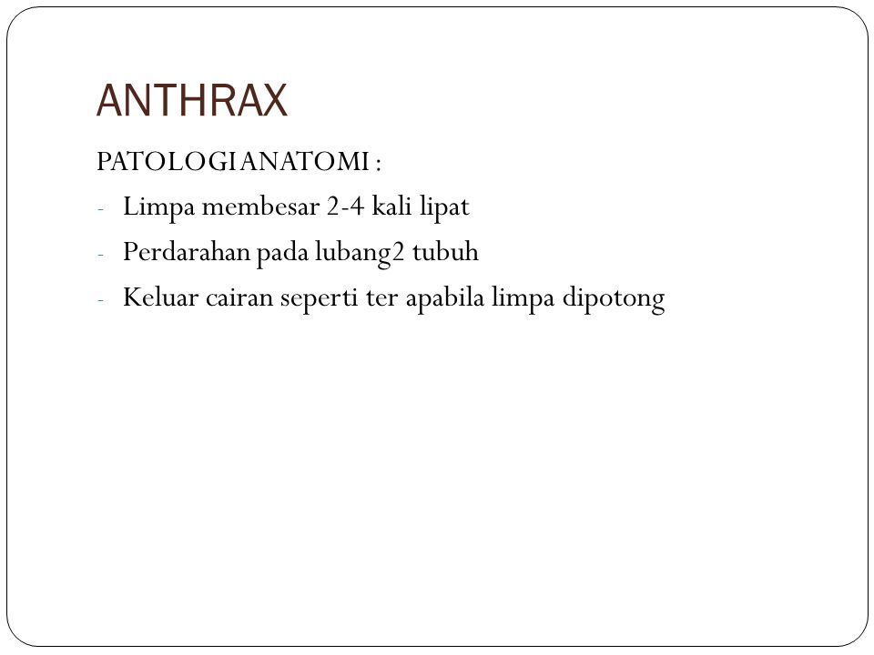 ANTHRAX PATOLOGI ANATOMI : Limpa membesar 2-4 kali lipat