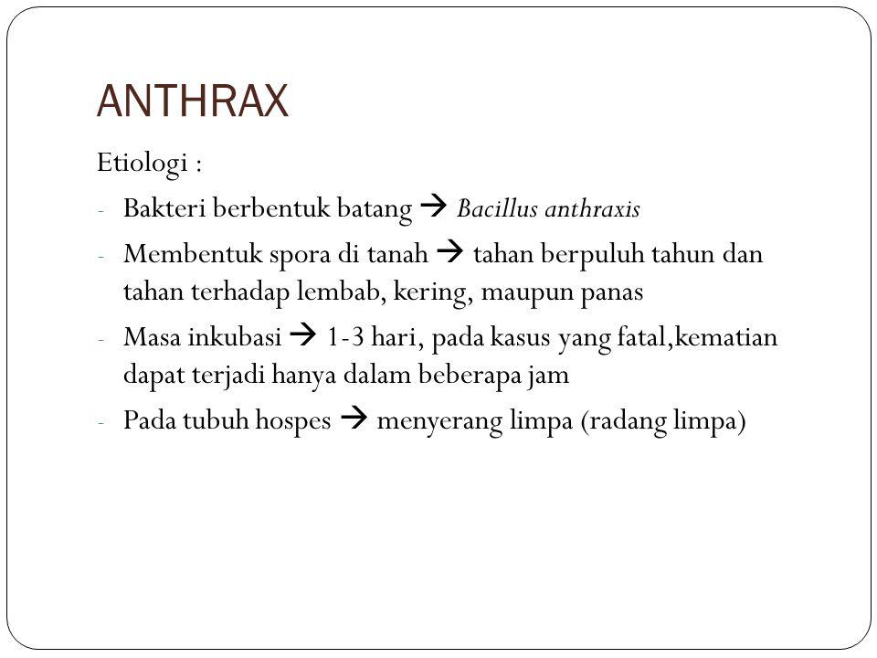 ANTHRAX Etiologi : Bakteri berbentuk batang  Bacillus anthraxis
