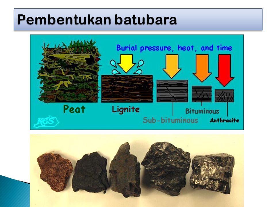 Pembentukan batubara http://www.wou.edu/las/physci/GS361/Fossil%20fuels/Coal.htm