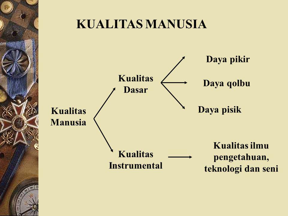 Kualitas ilmu pengetahuan, teknologi dan seni Kualitas Instrumental