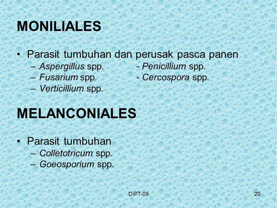 MONILIALES MELANCONIALES Parasit tumbuhan dan perusak pasca panen