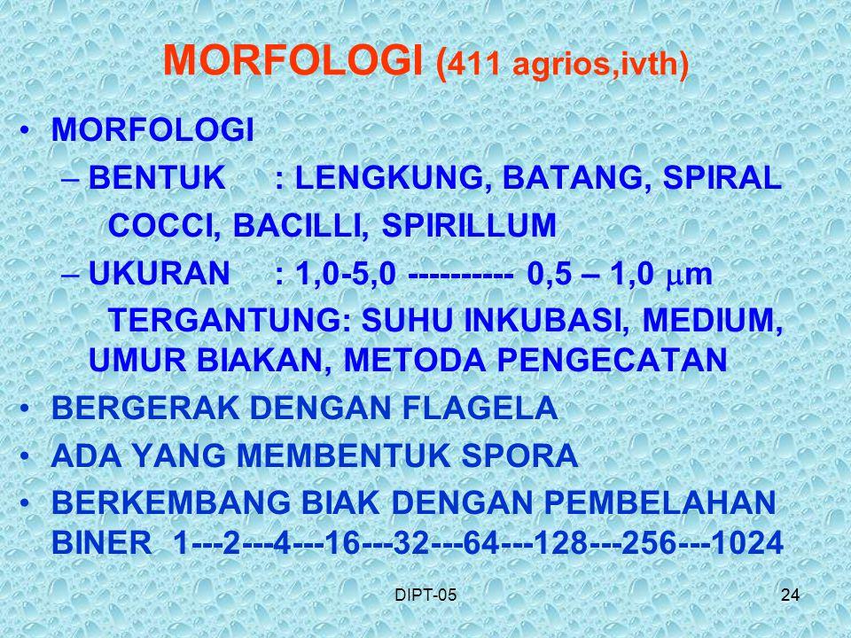 MORFOLOGI (411 agrios,ivth)