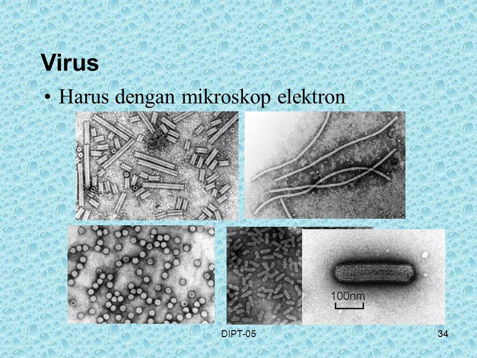 Virus Harus dengan mikroskop elektron DIPT-05 34