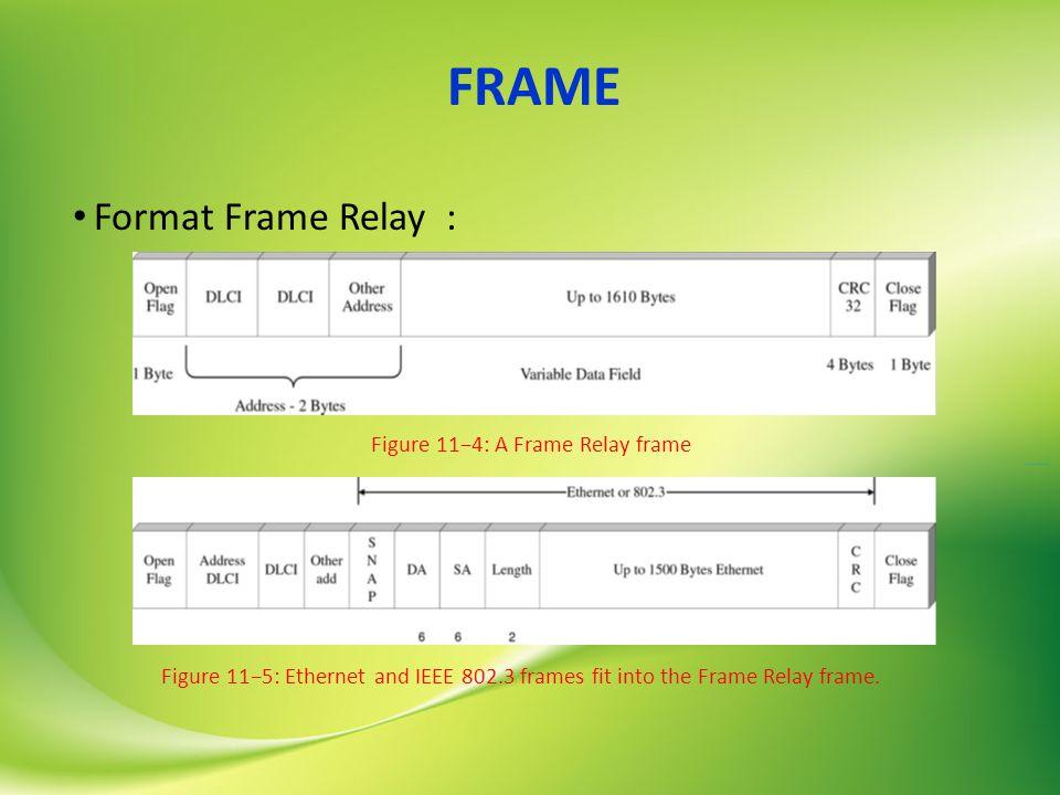 FRAME Format Frame Relay : Figure 11−4: A Frame Relay frame