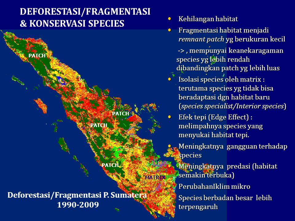 Deforestasi/Fragmentasi P. Sumatera
