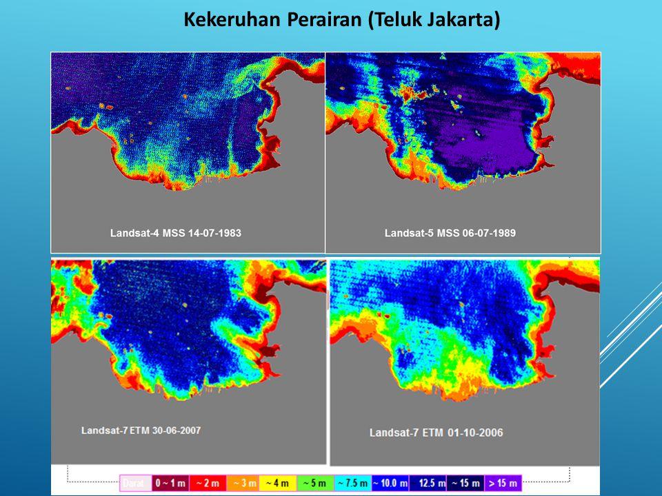 Kekeruhan Perairan (Teluk Jakarta)