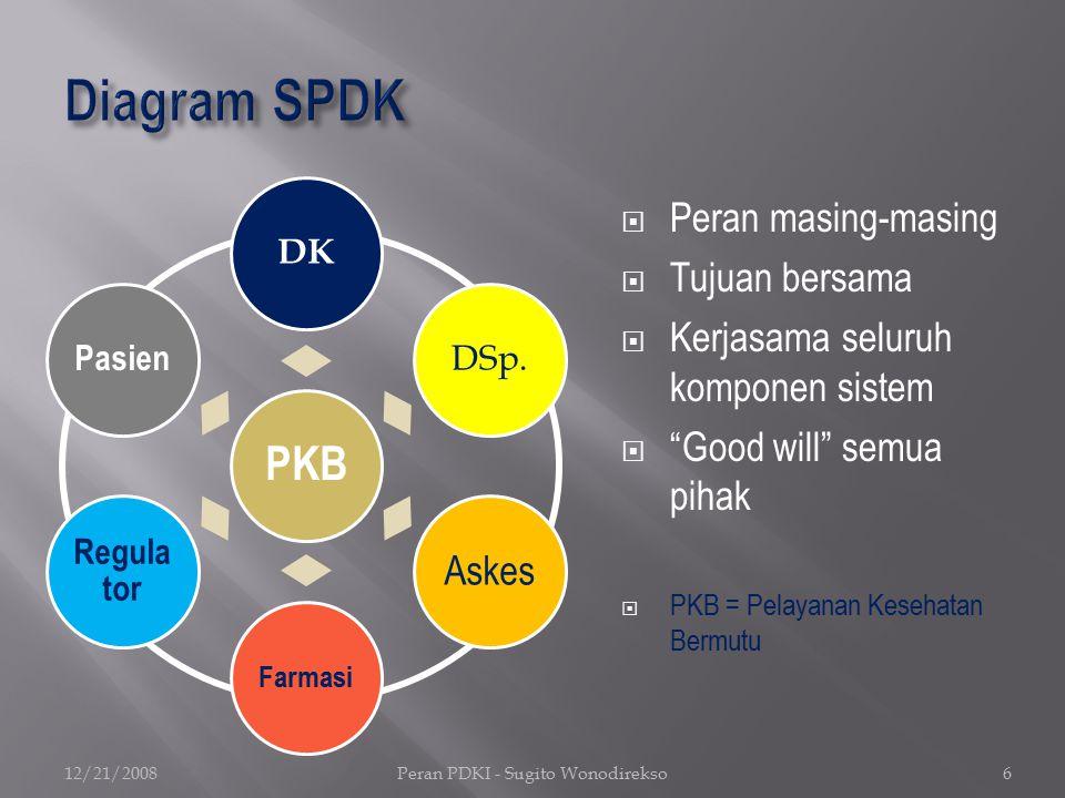 Peran PDKI dalam Pengembangan dan Implementasi SPKBKK