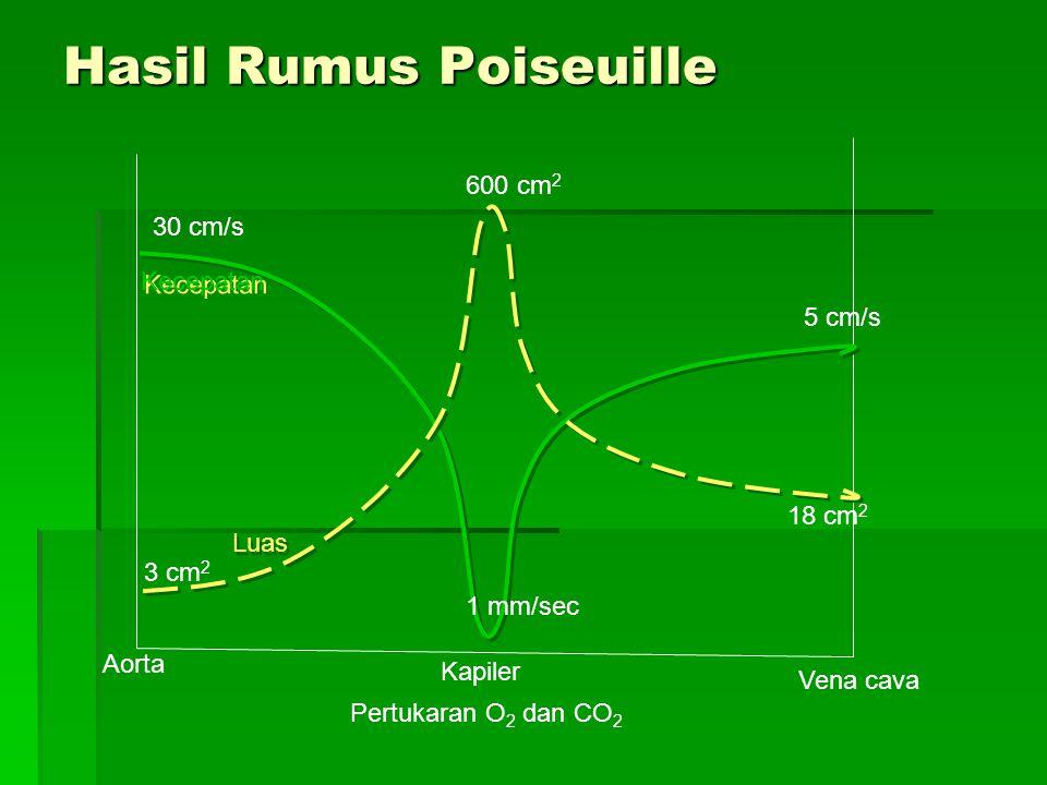 Hasil Rumus Poiseuille